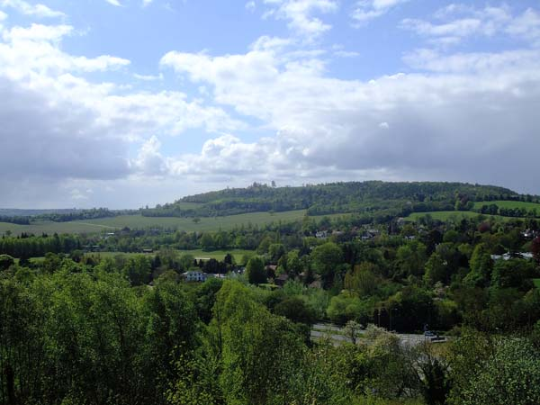 views from Box Hill, Surrey