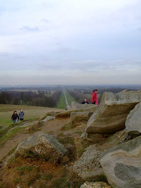 view of the long walk, windsor great park